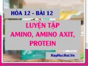 Bài tập luyện tập Amin, Amino axit và Protein có đáp lời...
